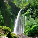 Sendang Gila dan Tiu Kelep Waterfall Lombok